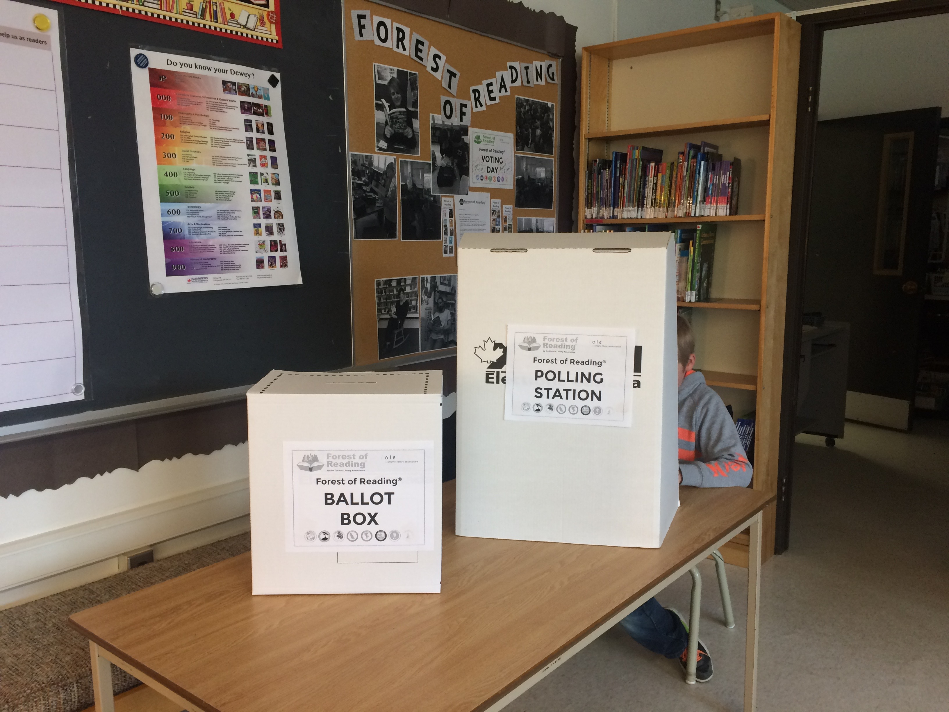 student voting for favourite book behind secret ballot